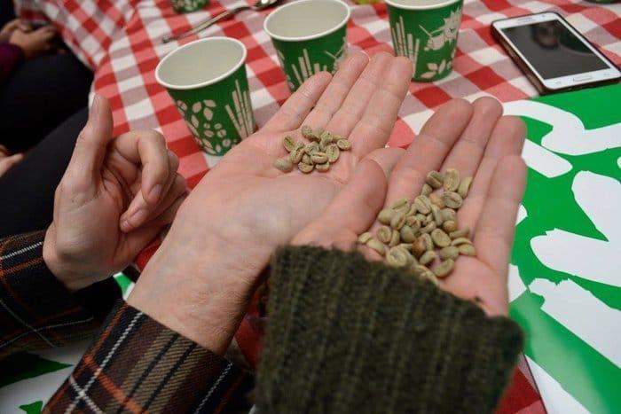 Cata café Fairtrade Ibérica