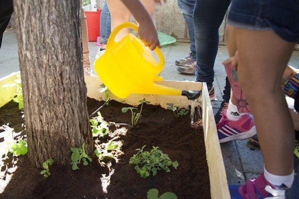 Lavapiés se planta