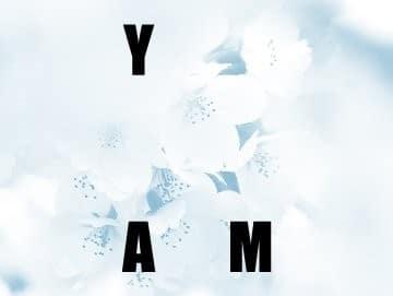 YAM 4.0 · Yoga, Alimenta y Medita