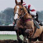 caballo-ganador-2