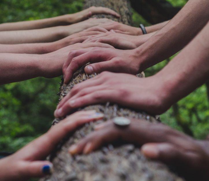 Arquetipos, el valor de trabajar en comunidad